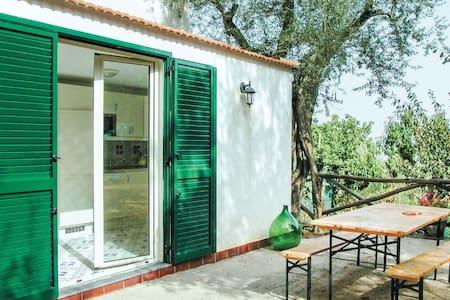 Villa Dell'olivo - Priora