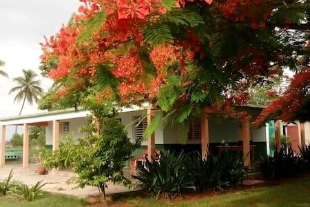 Villa D'Lirios Casa - Ház