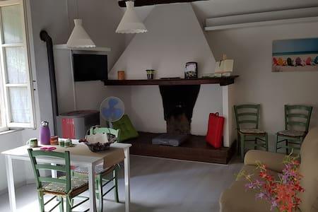 L'angolo di Zenzero - Appartement