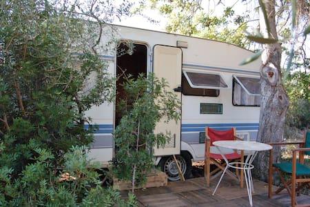 Vintage Caravan in Natural Place - Husbil/husvagn