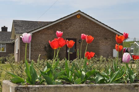 Brynmor Acres - Cerne Abbas - Bungalow