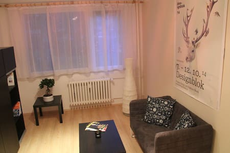 New and freshly renovated flat, just for your own - Praha