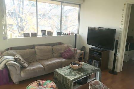 Spacious 1 bedroom apartment in O'Connor - O'Connor - Apartament