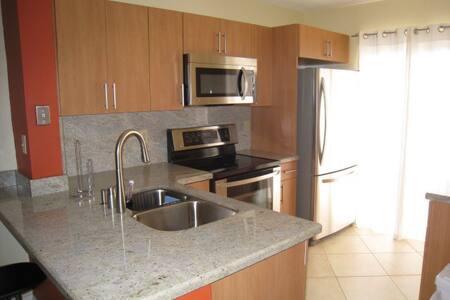 Modern Contemporary  flat - Miami - Condominium