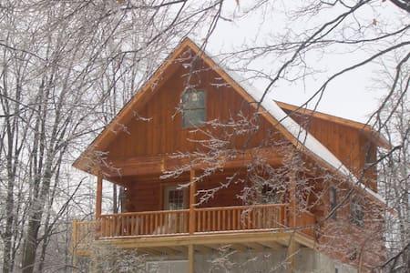Lake House near Elk Mountain - House