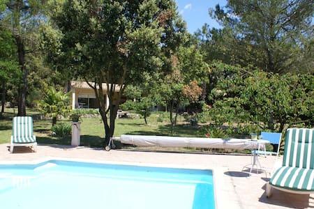 Près Carcassonne calme avec piscine - Lejlighed