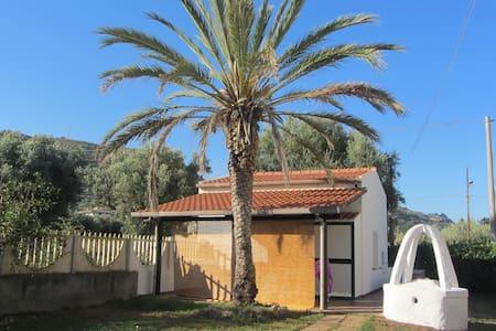 Residence con piscina - Bungalow - Drapia
