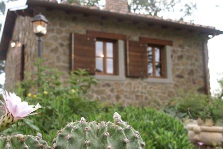 Cottage Il Poggiolino - Loro Ciuffenna - Almhütte