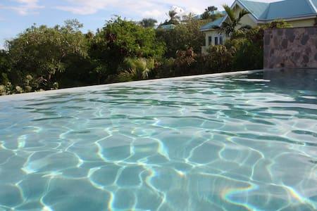 Stunning St Kitts Villa onthe ocean - Frigate Bay