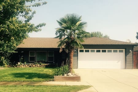 Palm Tree Paradise - Medford