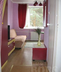 Cozy place with a reasonable price - Appartement