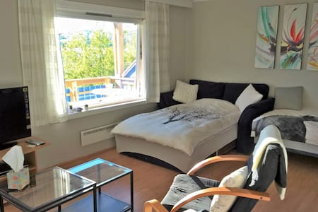 Studio apartment with balcony - Narvik