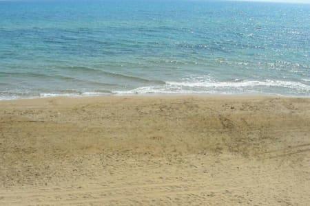 Easy rooms on the beach 2/3 pax - Annat