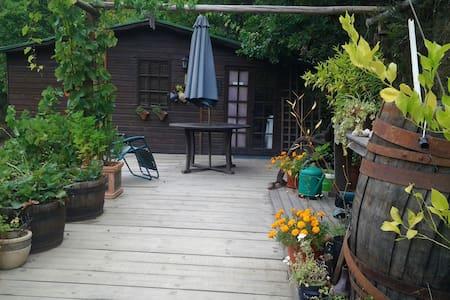 Cosy Mountain Cabin Benfeita - Hytte (i sveitsisk stil)