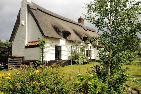 Broad Cottage  - Norfolk Broads - Hoveton - Casa