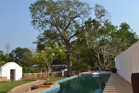Casa Frangipani in Aldona Village - Villa