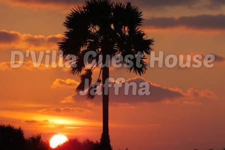 D'Villa Guest House Jaffna - Bed & Breakfast