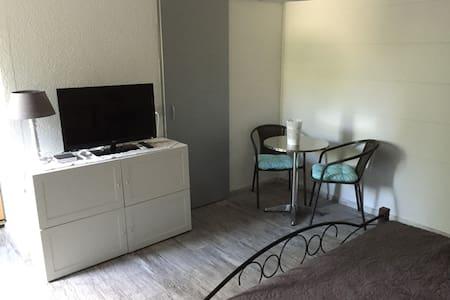 Studio dans un villa individuelle - Apartemen