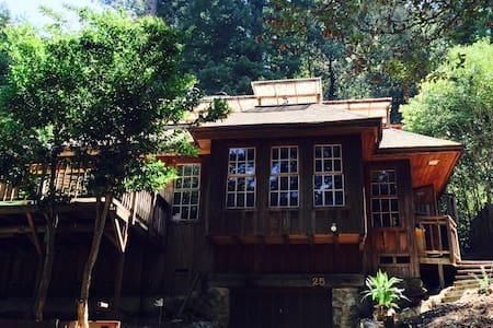 Magical Mount Hermon Cabin!