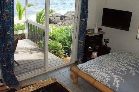 Oceanfront Studio in Tropical Area - Pāhoa - Apartment