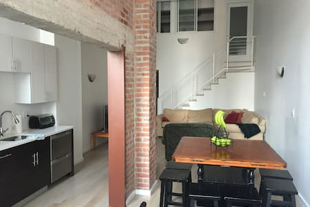 Luxurious 2 Br Loft in Center City