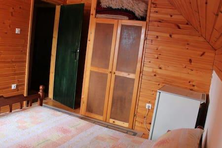 Single room with shared bathroom - Žabljak - Hus