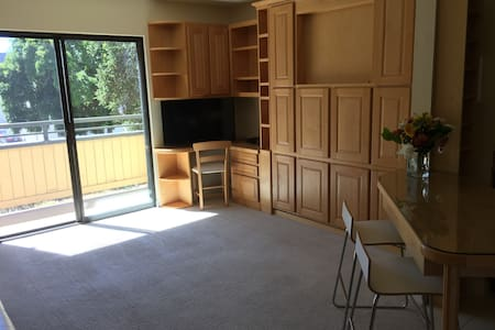 55+ Studio in downtown San Mateo