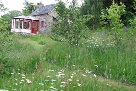 Ty Gwennol - off-grid Eco- cottage - Brecon