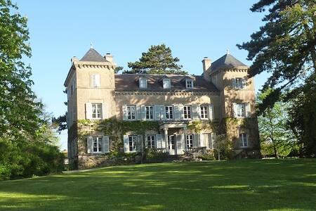 Manoir entre Lyon et Beaujolais - Bed & Breakfast
