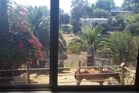 Farm Animal Sanctuary Cottage - Ház