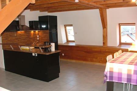 duplex centre ville 100 m2 - Gérardmer - Loft