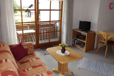 Schönes Appartement mit Bergblick - Apartament