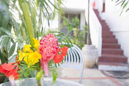 Mango Mansion Bunk & Breakfast w AC - San Juan - Bed & Breakfast