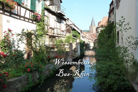 Ground floor flat, center of a small city, 8000hab - Wissembourg - Apartament