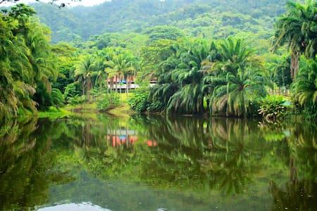Ocean, Rainforest, Nature, Golf! - Tambor Beach - Villa