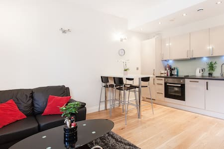 Lovely 1 Bed flat in Camden Town