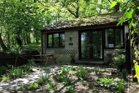 Breakaway Lodge - woodland setting - St. Ives