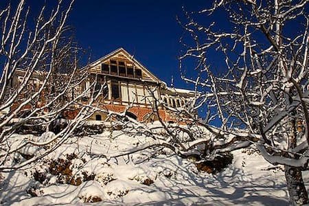 Apple Orchard House in Himachal