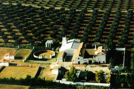 Cortijo (Ranch) San Antonio - Casa