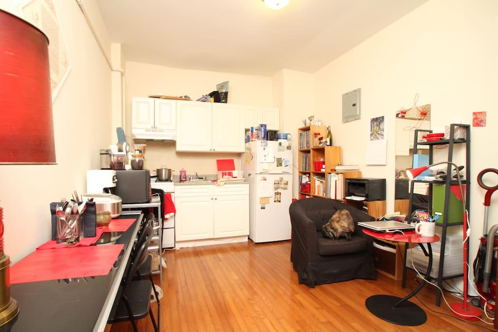 Comfy apartment, adorable cat!