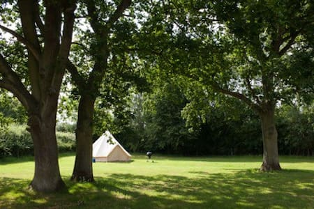 Gorsey Meadow Norfolk - Hockering - Tenda