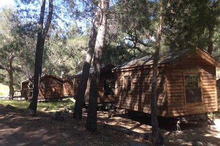 Wilderness Cabin #3 (Big Pine) - Kisház