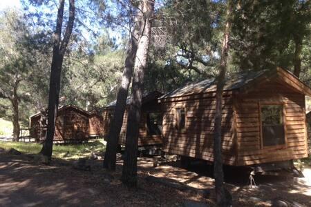Wilderness Cabin #5(Gibraltor Peak) - Kisház