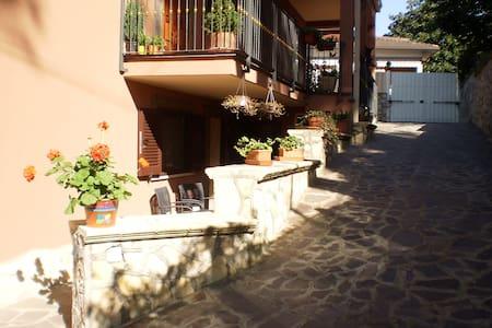 Fernanda's house  Castelli Romani