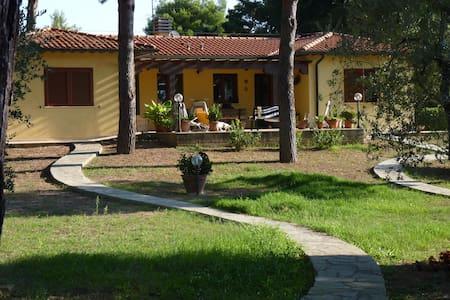 villa indipendente 2 km dal mare - House