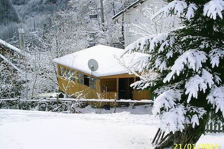 Family bungalow Transalpina Romania