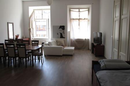 Wenceslas Square   48 m2 luxury rm