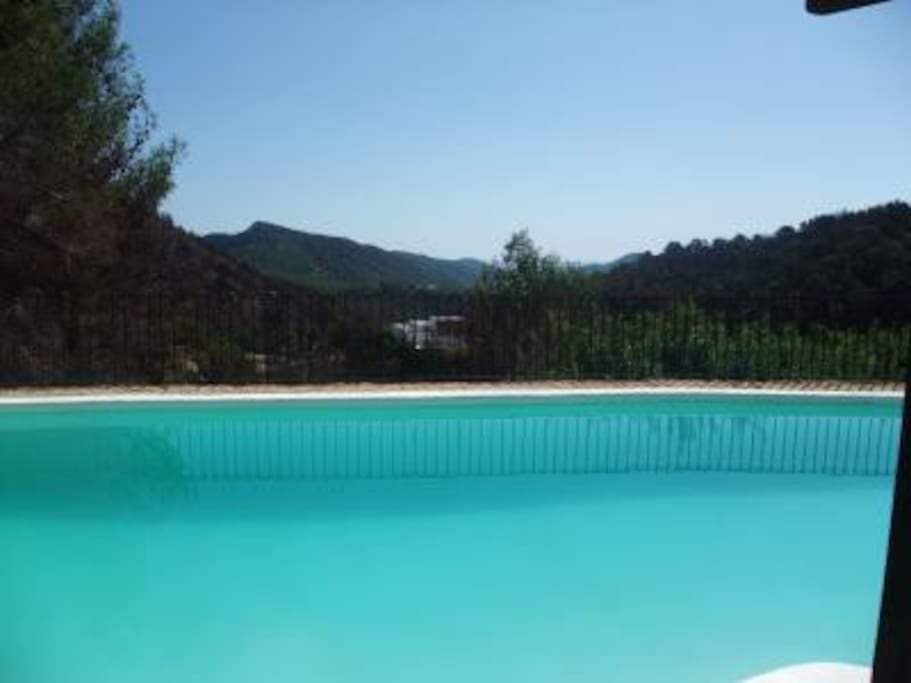 THE VIEW FROM THE SWIMMING POOL