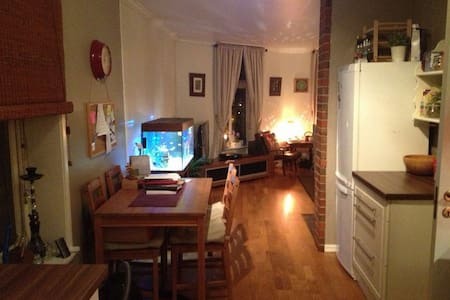 Cozy apartment in the city center - Hamar - Appartement