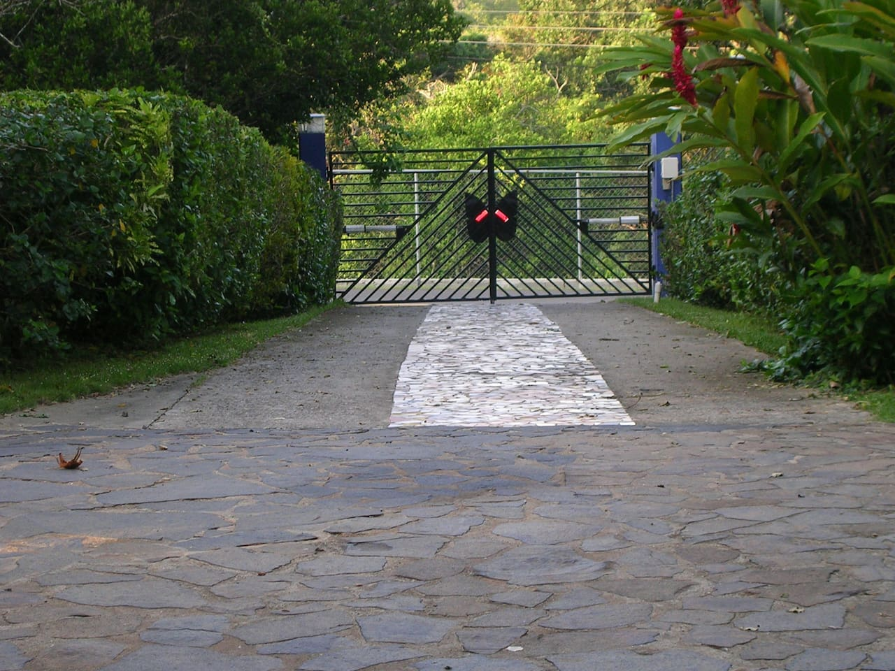 Villa Mariposa drveway. Gate has butterfly on it. Left on the main road, across the 'Bet-El,' Church.